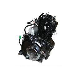 Lifan engine 50cc