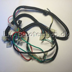 Wiring harness AGB-30 (Not waterproof plug)